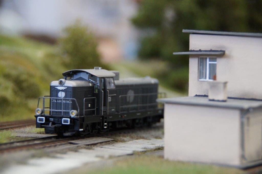 DSC01065 2