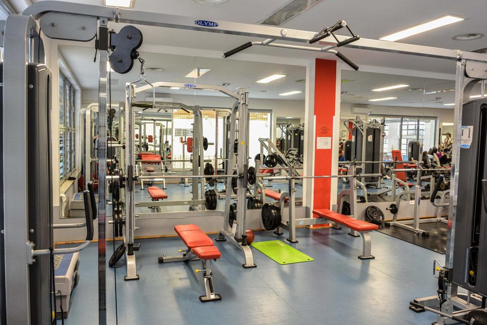 Fotografie sprzętu do ćwiczeń znajdującego się na wyposażeniu siłowni